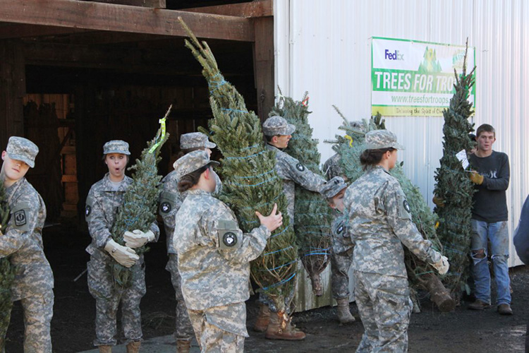 Trees For Troops Image