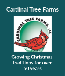 Cardinal Tree Farms Ad