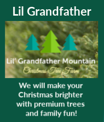 Lil Grandfather Ad